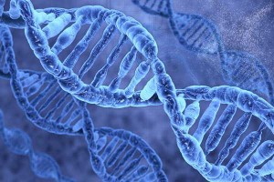 Επιστήμες: Διατροφογενετική - Διατροφογενωμική